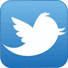 Twitter-Logo-cochelimp.com